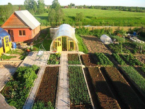 Всё о даче и огороде
